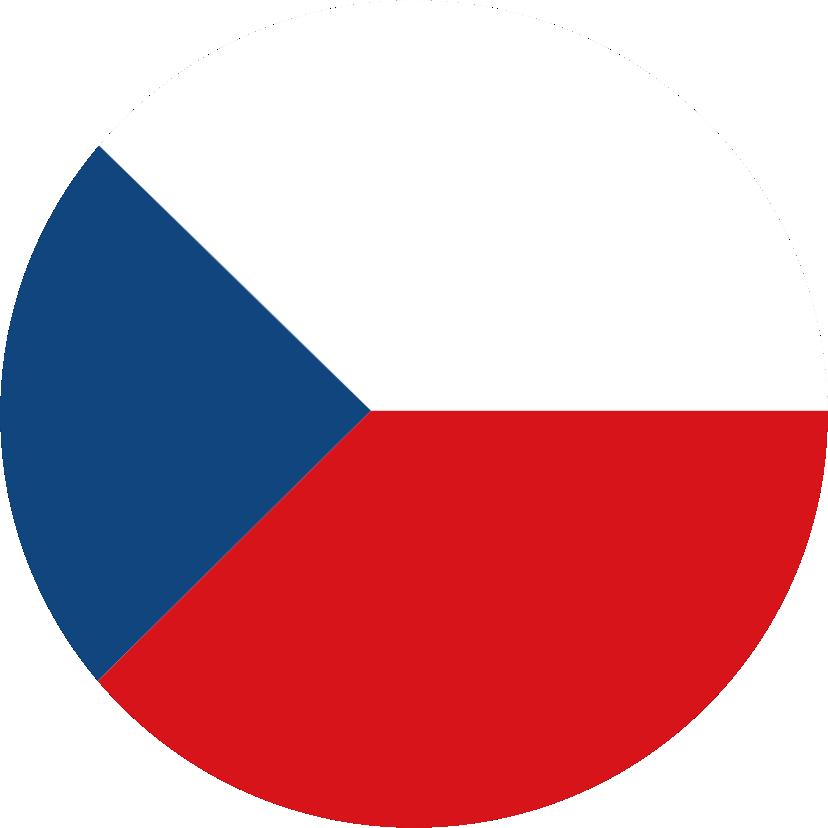 поступление в чехию
