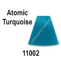 антоцианин A01