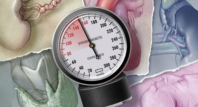 Выявление и лечение артериальной гипертонии - Кардиолог ...