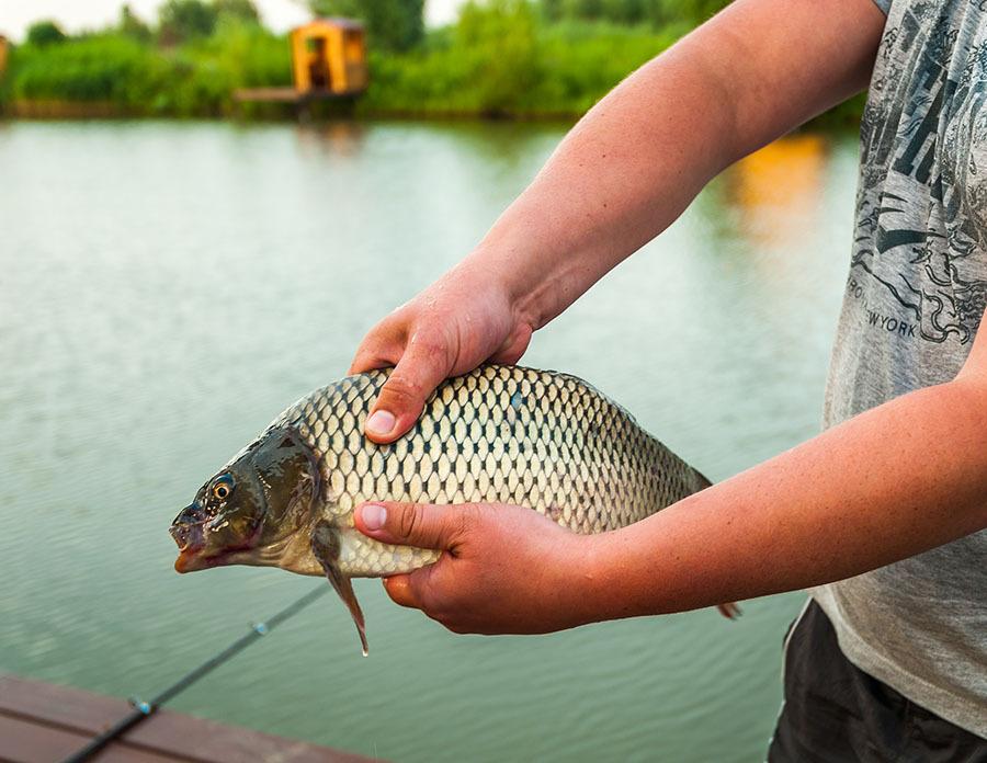 Рыбалка в тольятти озера