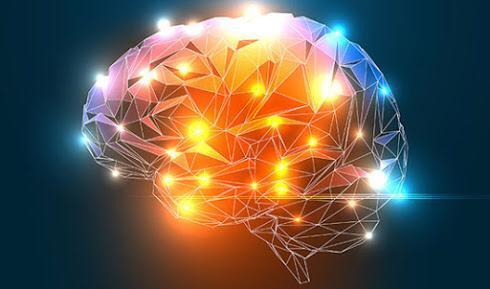 Мозг человека. Способен ли он к самоизлечению от болезни Альцгеймера?