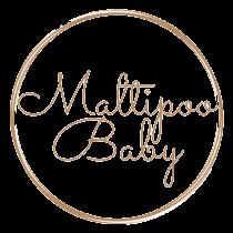 Логотип maltipoo baby