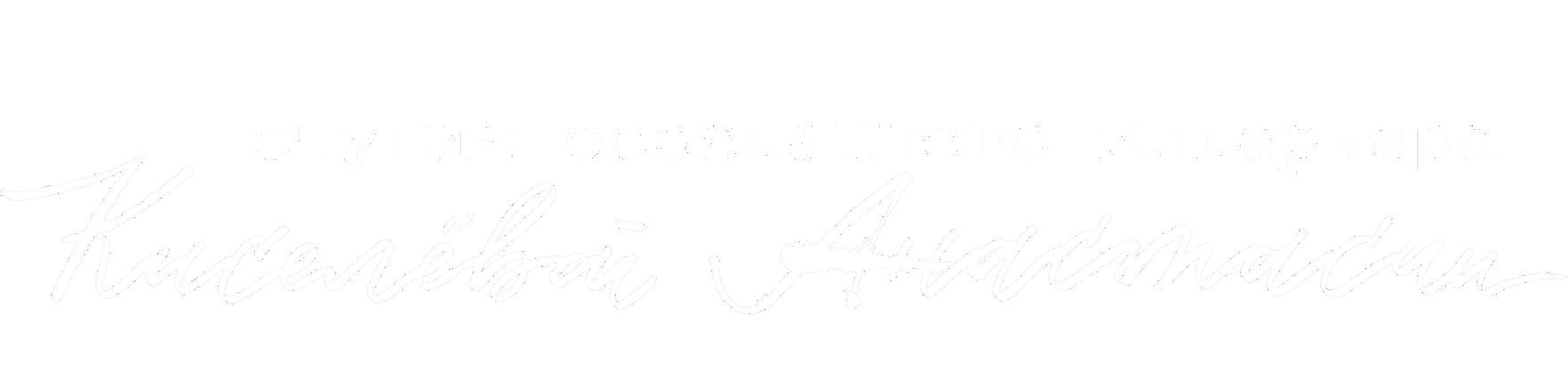 студия осознанного дизайна АНАСТАСИИ КИСЕЛЕВОЙ