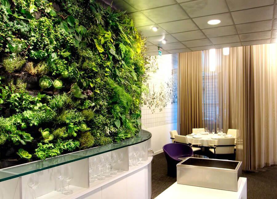 Трава на стенах в интерьере