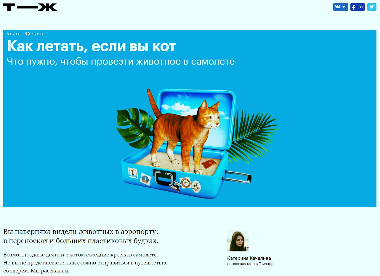 """Статья """"Как летать, если вы кот"""" из Тинькофф-Журнала"""