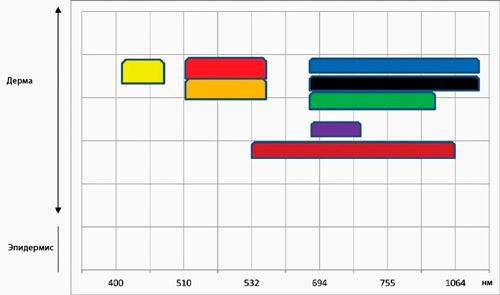 Спектр поглощения длин волн пигментом различных цветов