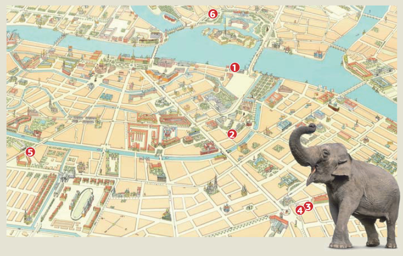 Где жили слоны в Петербурге