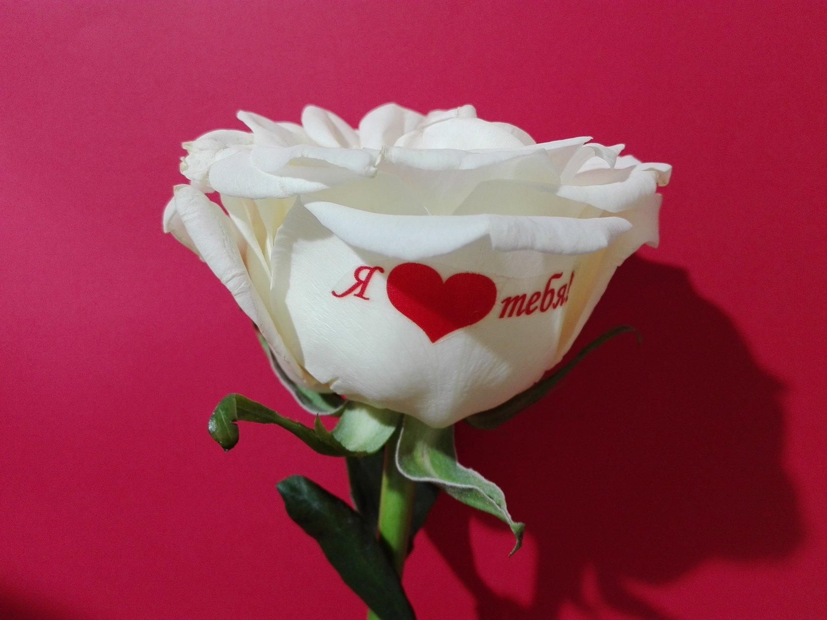 Заказать цветы с надписью