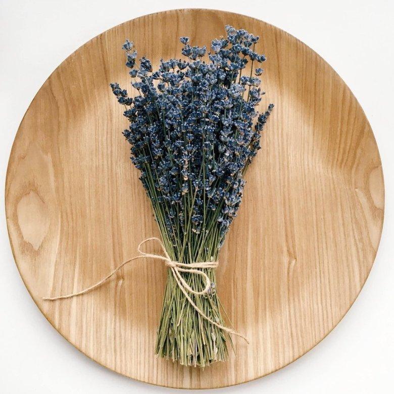 Купить цветы лаванды в спб, уфа адреса черниковке