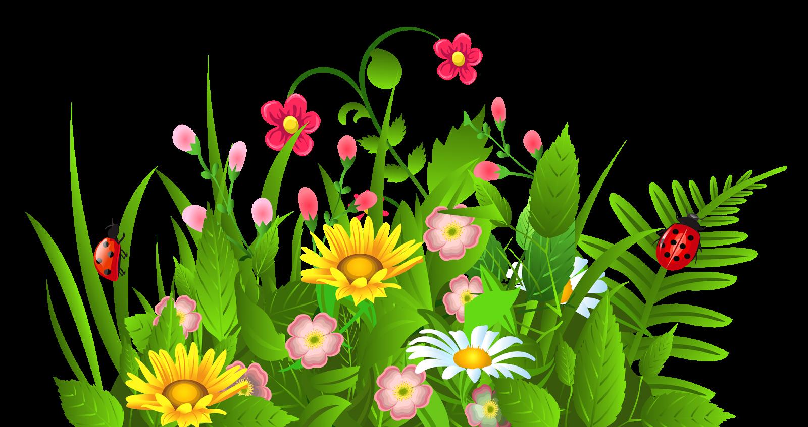 Питомник декоративных растений 100 Кустов