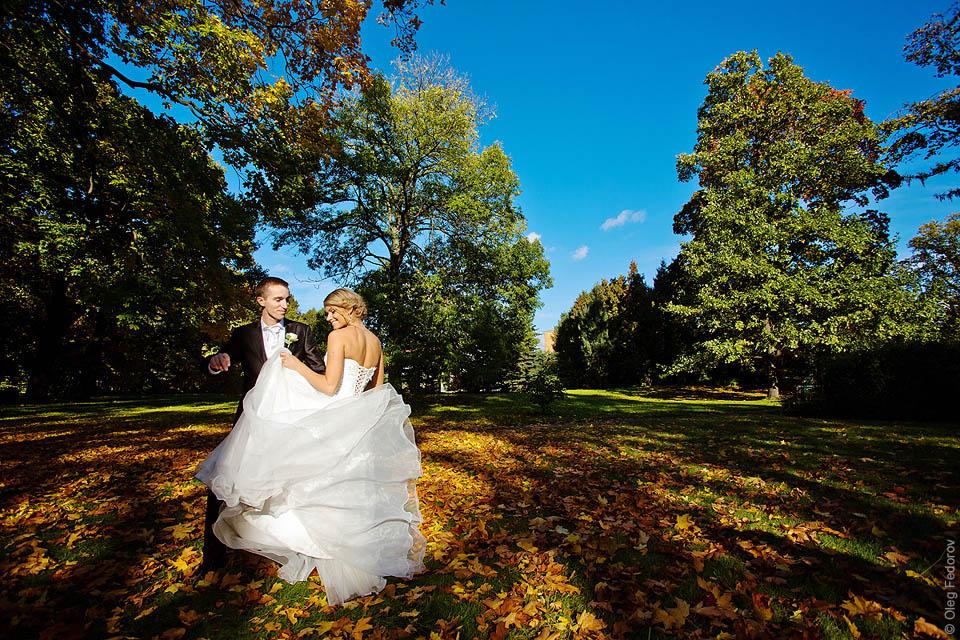 ограничились места для фото свадьбы петроградка просмотра индикаторов