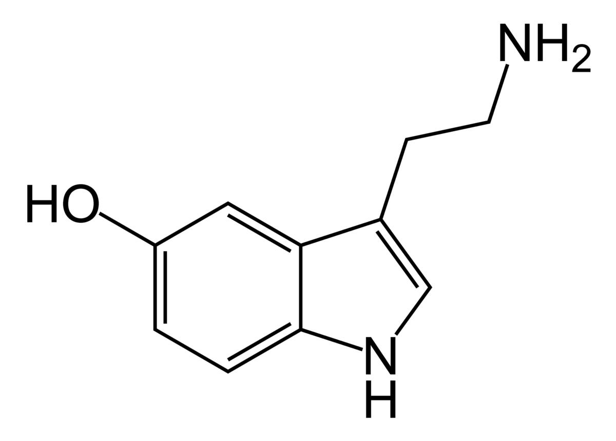 a0cd45e6be07 В 1943 году в одной из лабораторий базельской фармкомпании Сандоз на кончик  пальца Альберта Хофманна попала капелька синтезированного вещества, ...