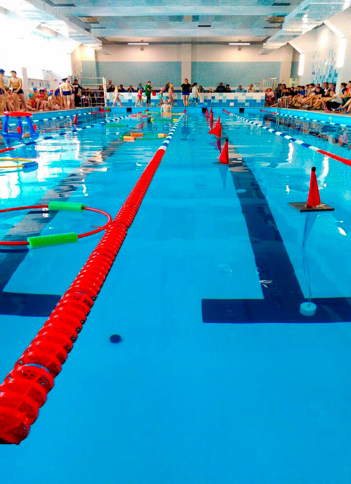 Соревнования по плаванию в течение года