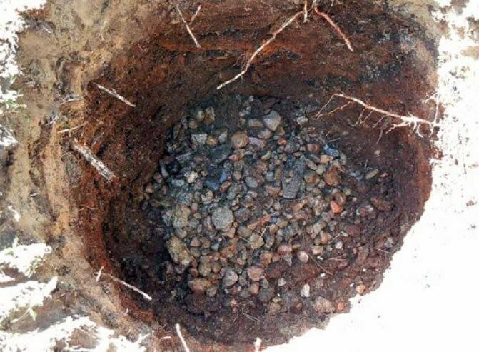 На дно ямы укладывают слой дренажа, чтобы вода не застаивалась в корнях