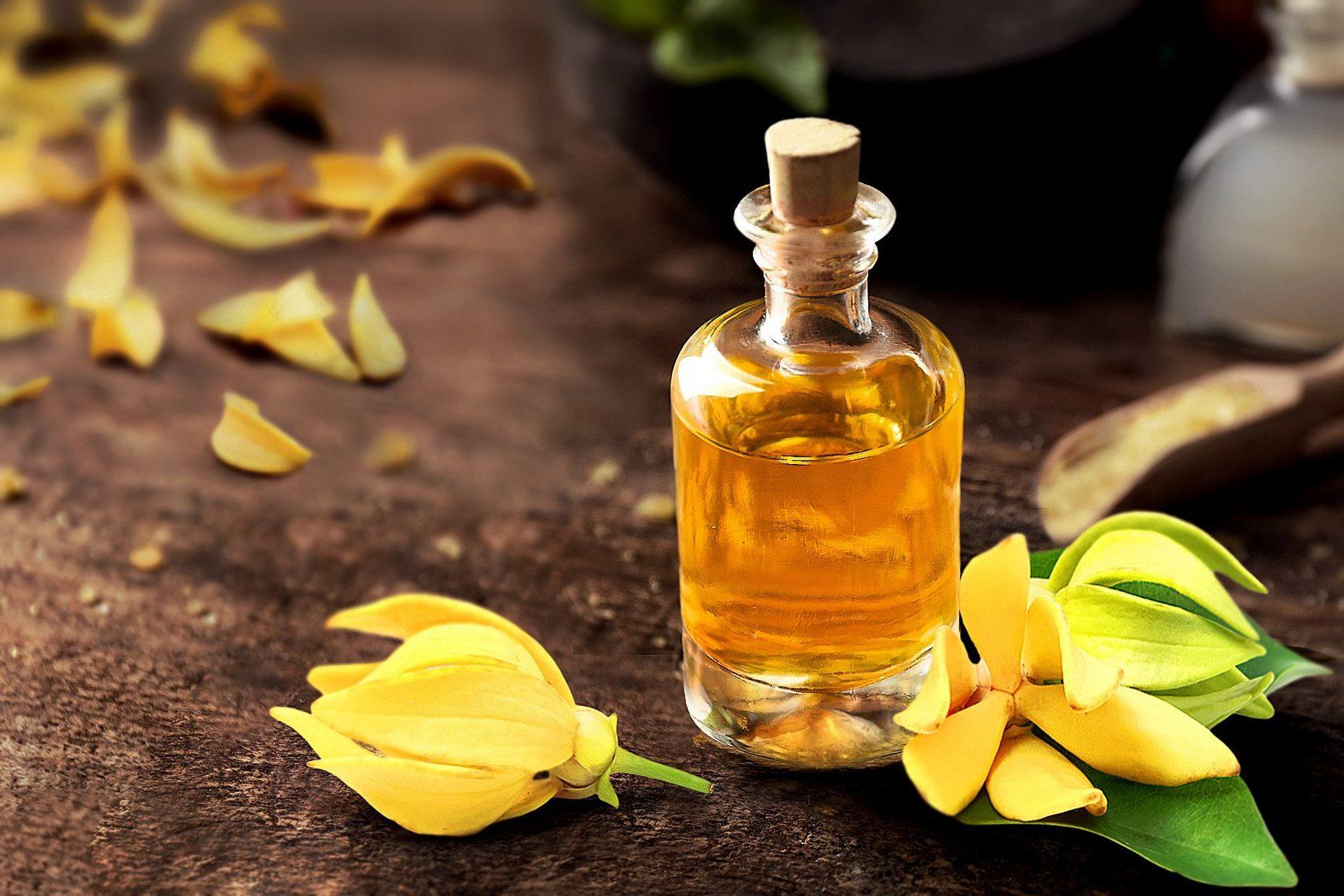 Эротические смеси масел, Эфирные масла Афродизиаки. Список Эротических 24 фотография