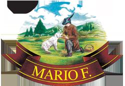 Mario F.
