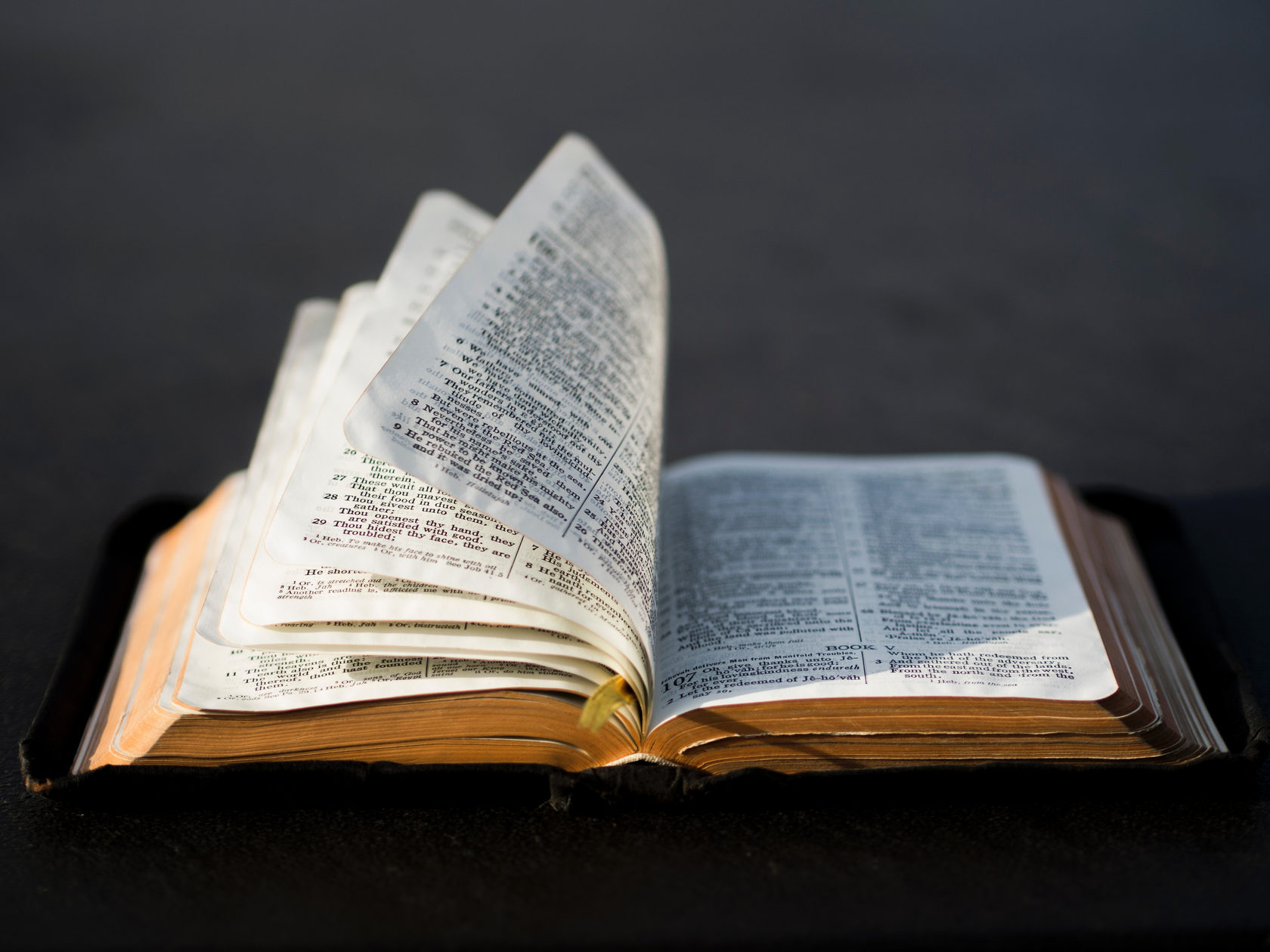 Open Bible, Pastoral Care