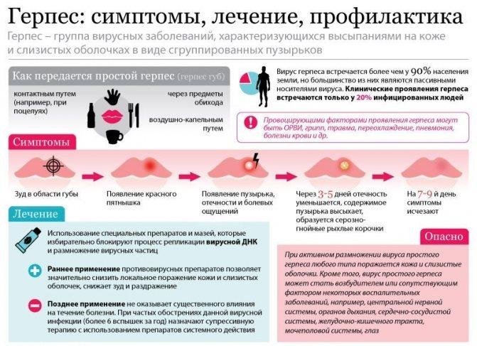 Герпес может вызвать простатит лечение простатита луком с чесноком