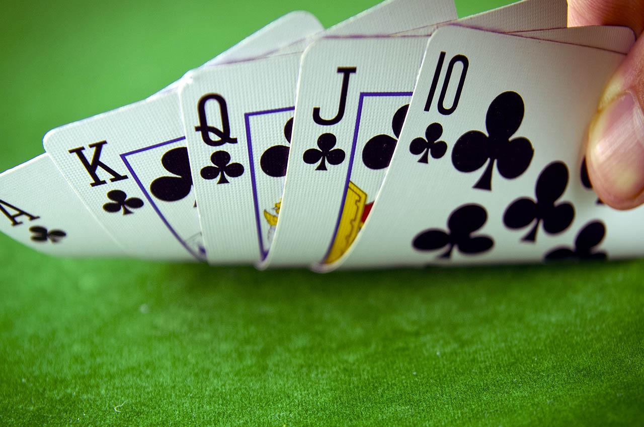 Гранд казино статистика форума
