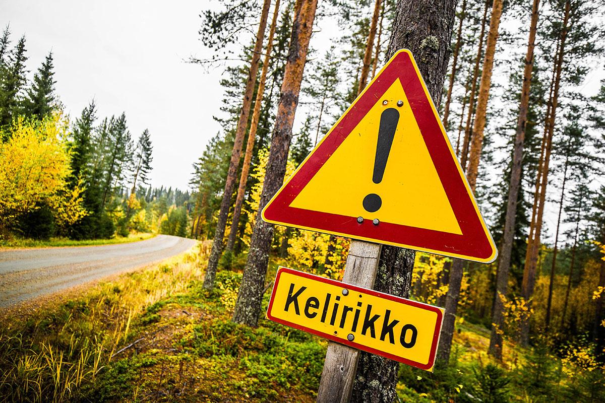 Спецучастки ралли Финляндия 2021