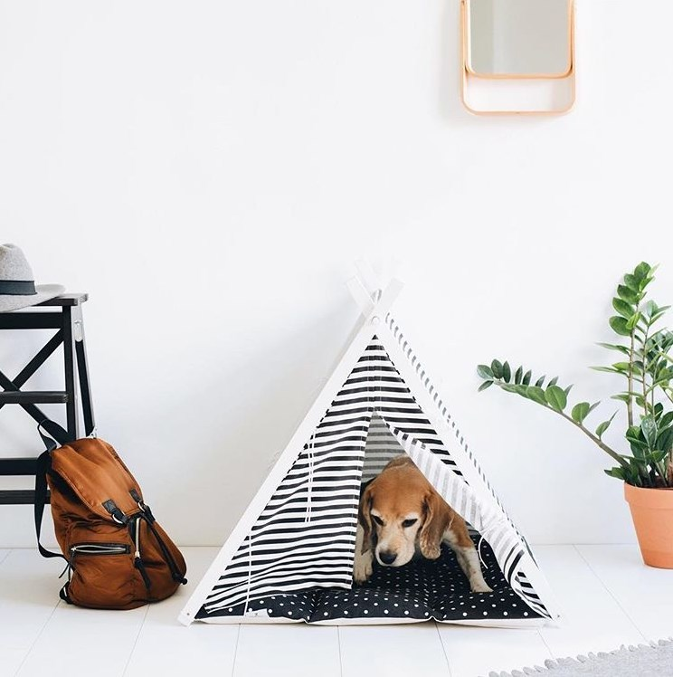 Dog And Teepee - perfect dog bed for pugs, frenchies, beagles and cats.