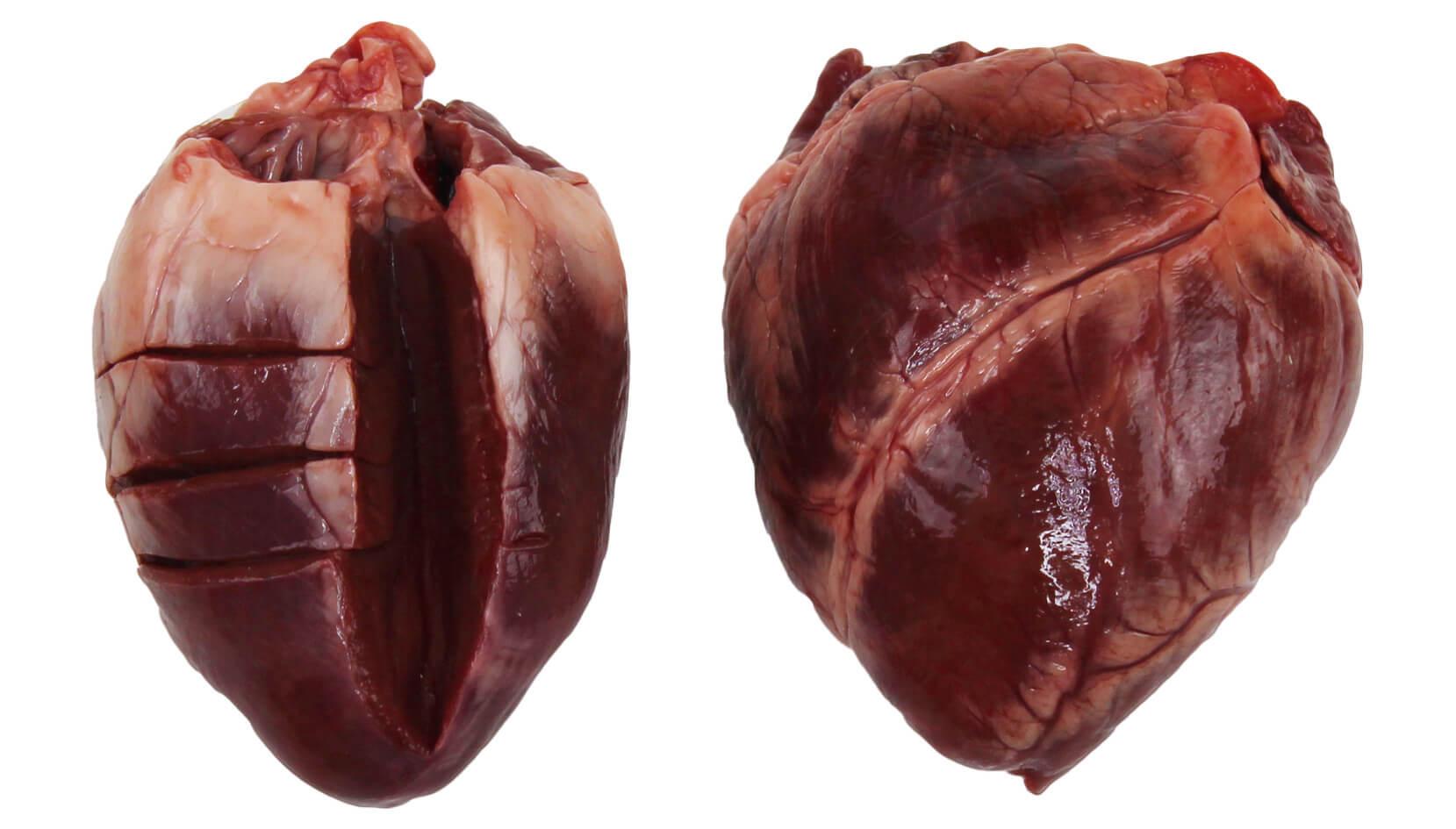 говяжье сердце