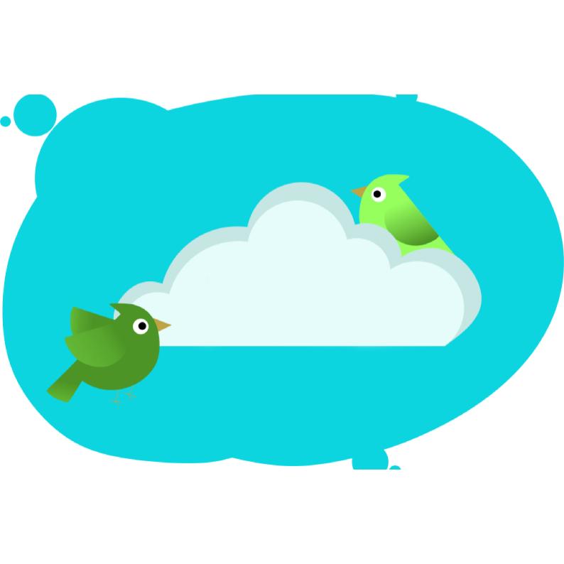 Задача на нахождение скорости птиц