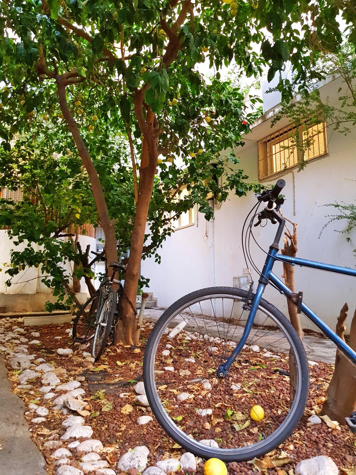 Дворик в Белом городе. Тель-Авив.