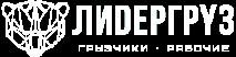 Лидергруз