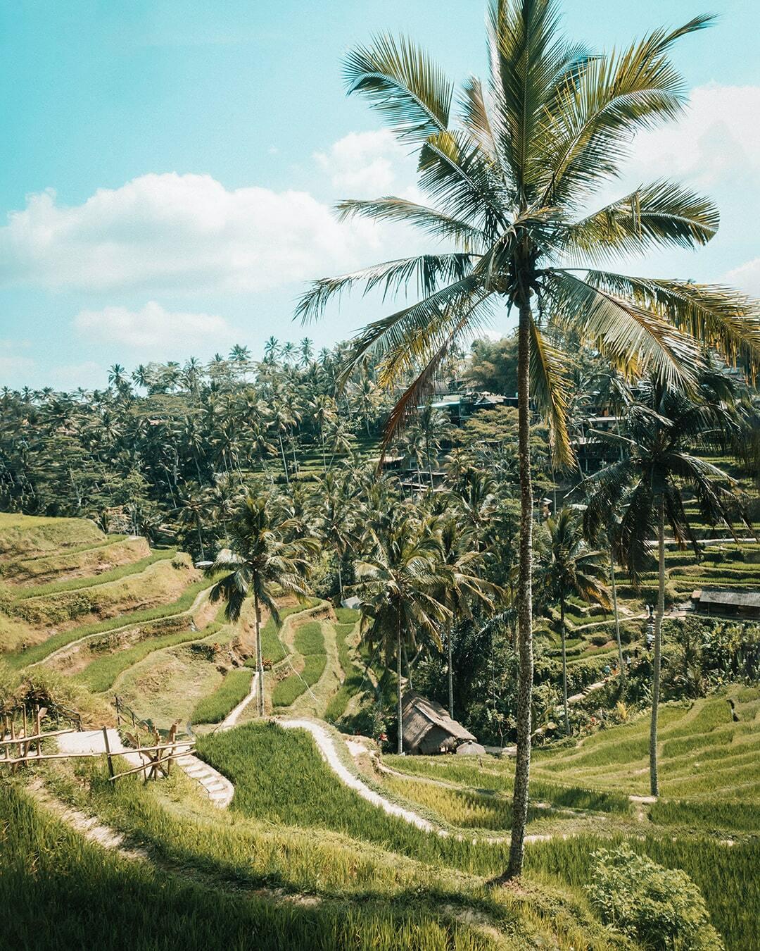 Foto van Instagram Simon Wijers, genomen op reis in Bali
