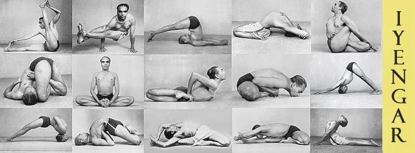 карие поза дельфина в динамике йога объявлений