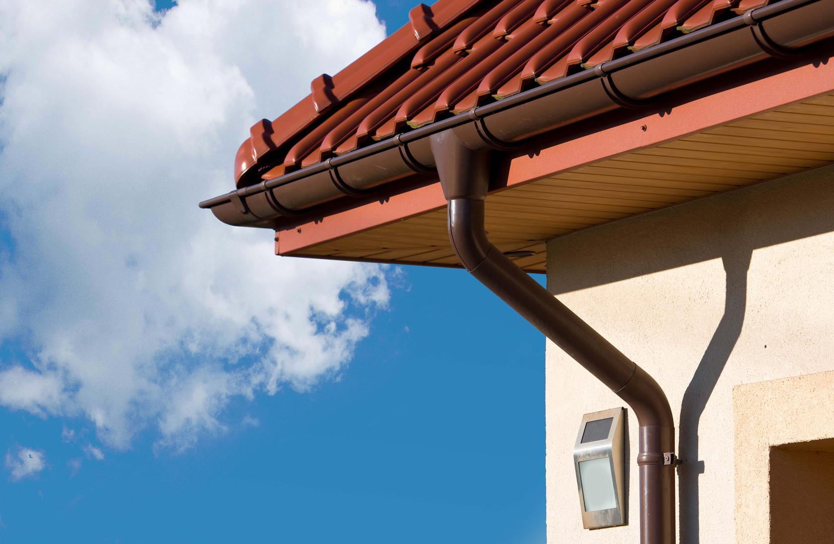 чего сливы для крыши в картинках против