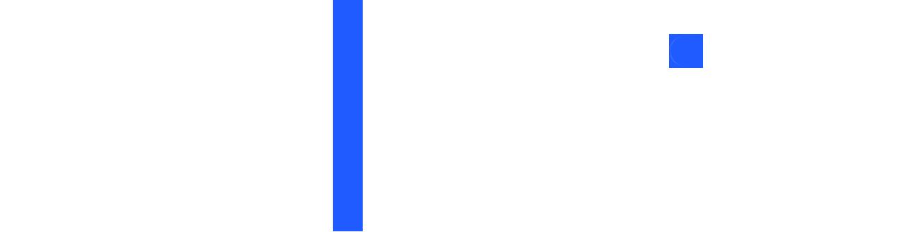 500Brains