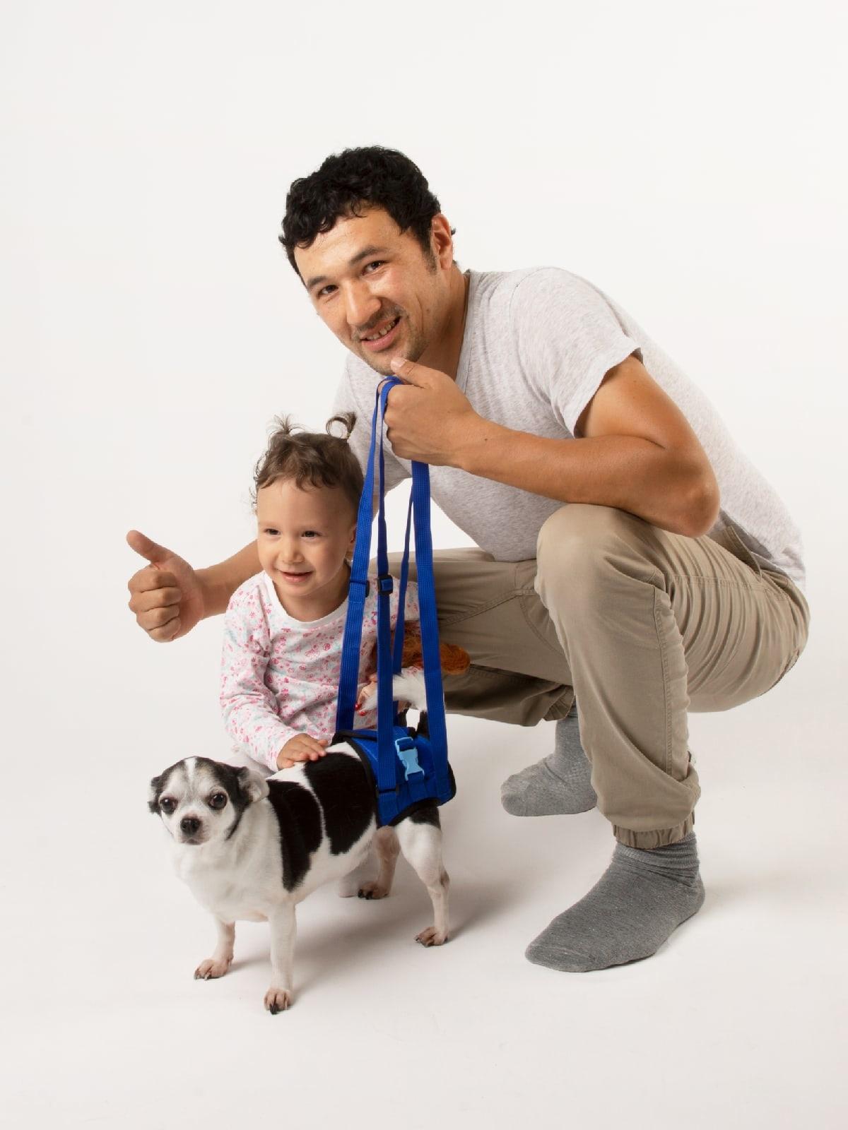 Поддежка для собак и кошек