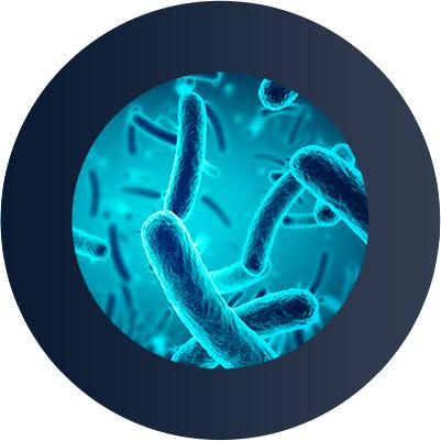 Фильтр Фибос защищает от 99 % бактерий и вирусов