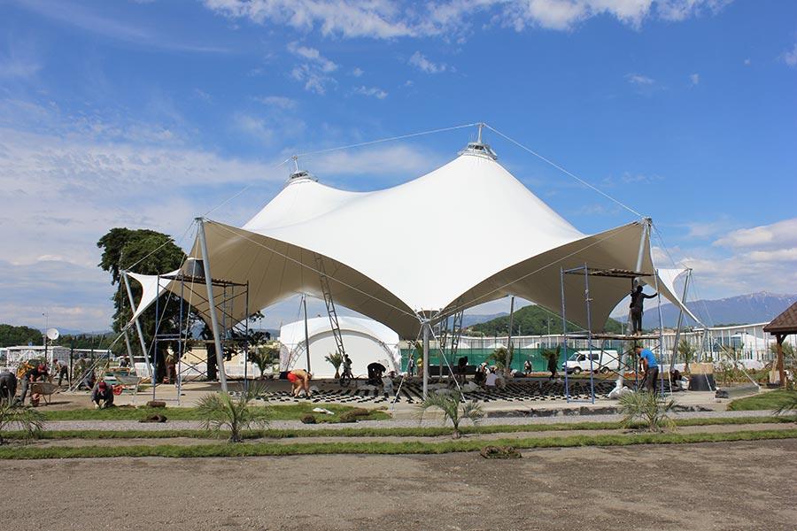 опытных садоводов, белый шатер сочи парк фото злаковых имеют