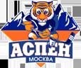 Хоккейная академия АСПЕН