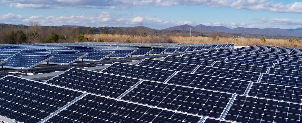Правительство поддержало инициативу «зеленых инвесторов»