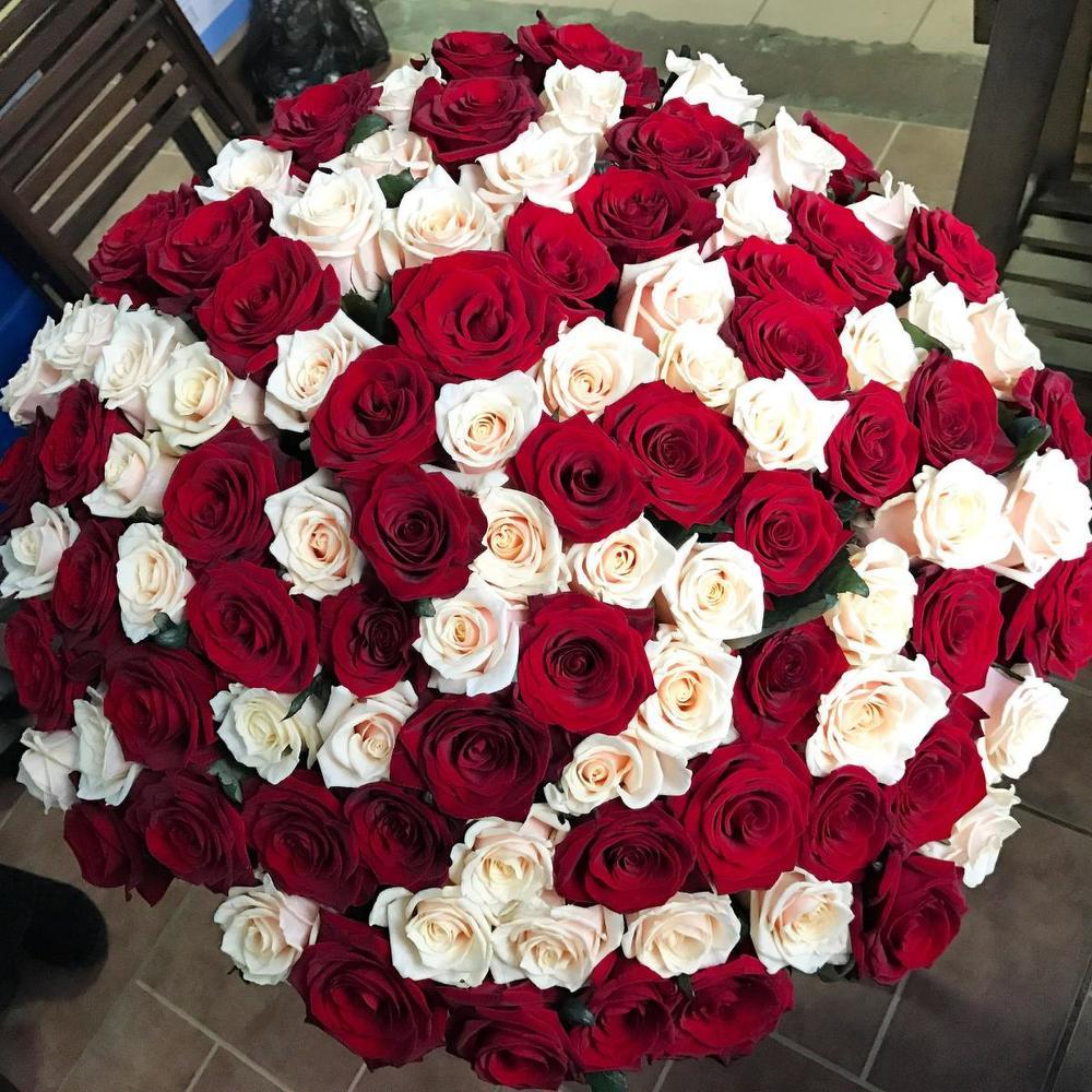 красивый самый большой букет живых роз фото комната звучит