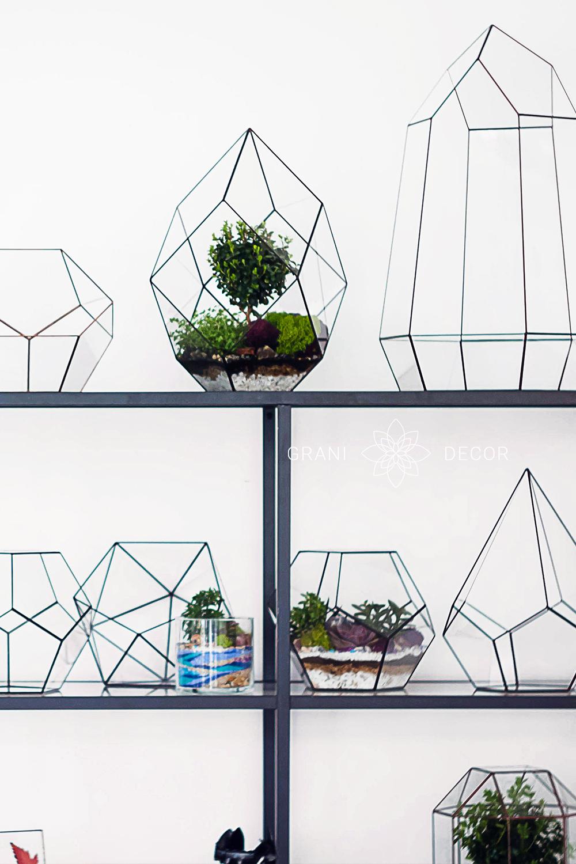 черный стеллаж с стеклянными формами для флорариумов из стекла и геометрических форм