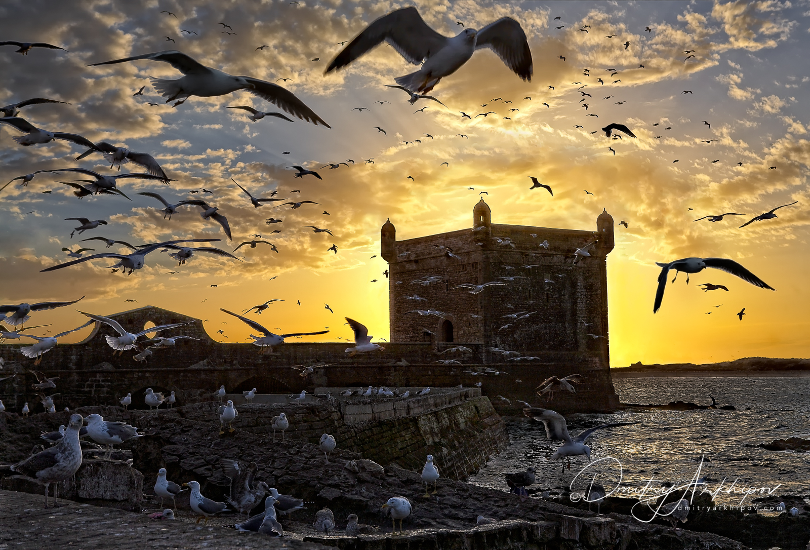 Morocco Photography expedition. Essaouira fortress