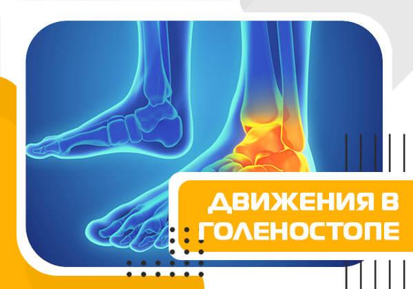 Разбор типов движения в суставах на примере голеностопного сустава. Из фитнес обучения тренеров по анатомии