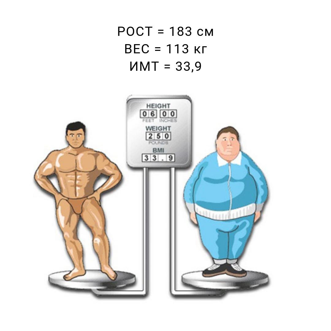 Масса тела человека картинки