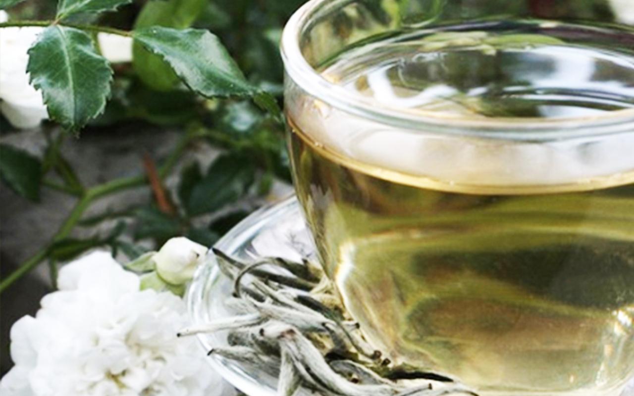 для чего нужен белый чай