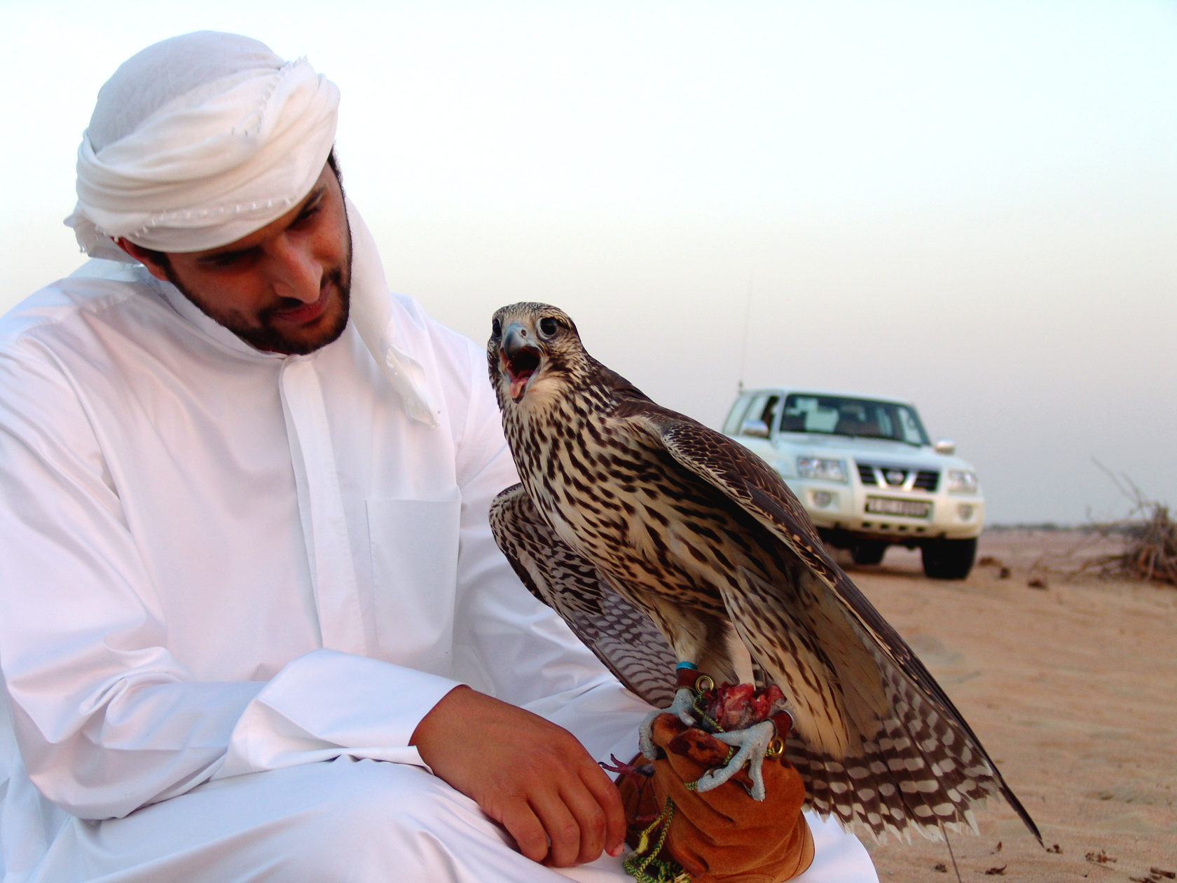 стала терпеть арабская жизнь фото снять квартиру