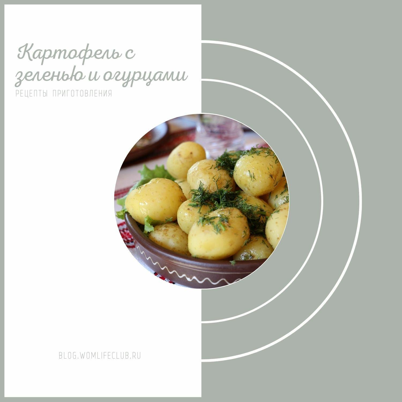 Картофель с зеленью рецепт приготовления