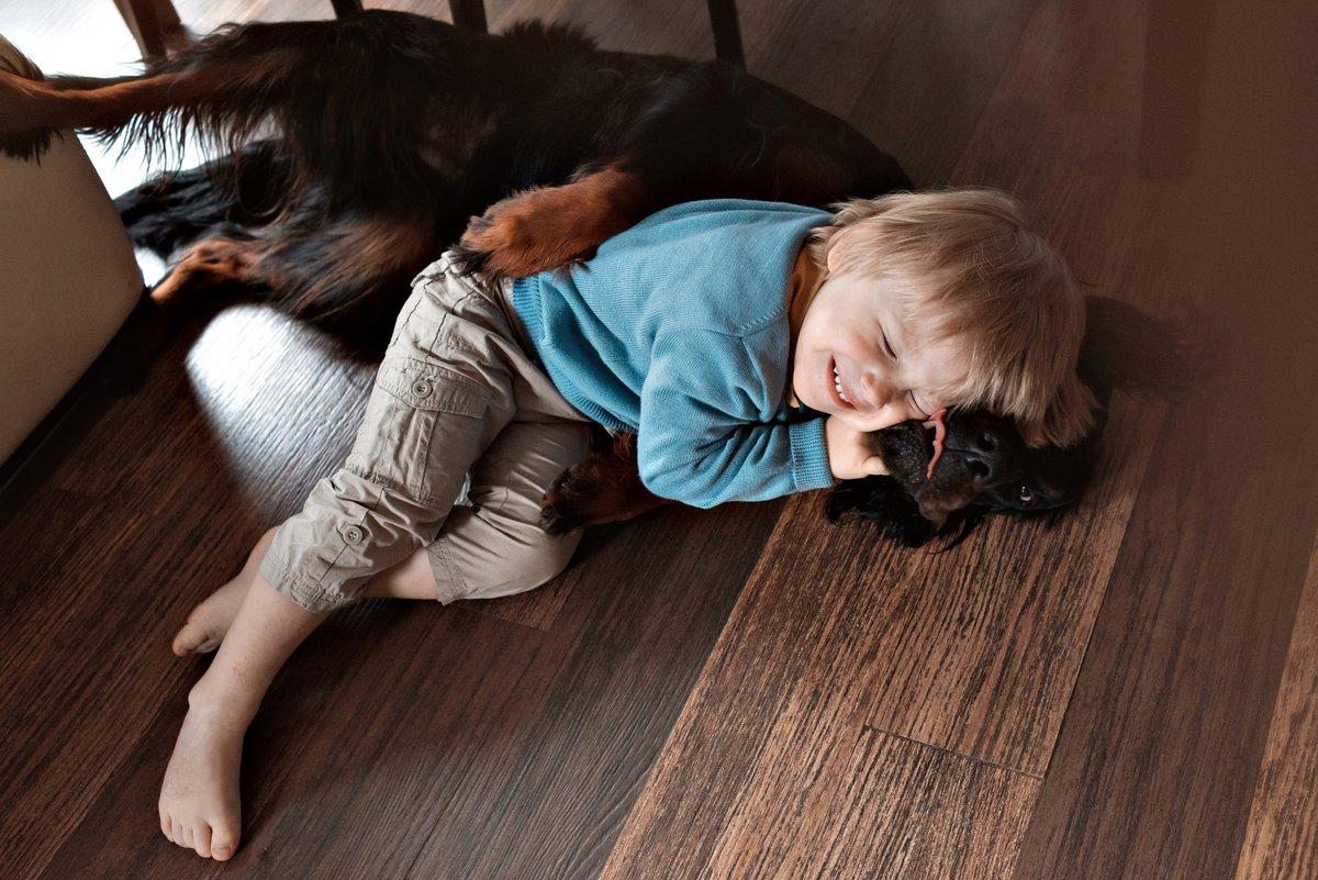 Детская фотосессия дома с животными
