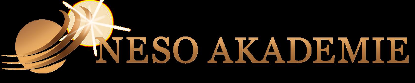NeSo Akademie