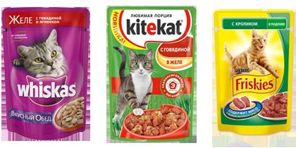 Плюсы влажного корма для кошек