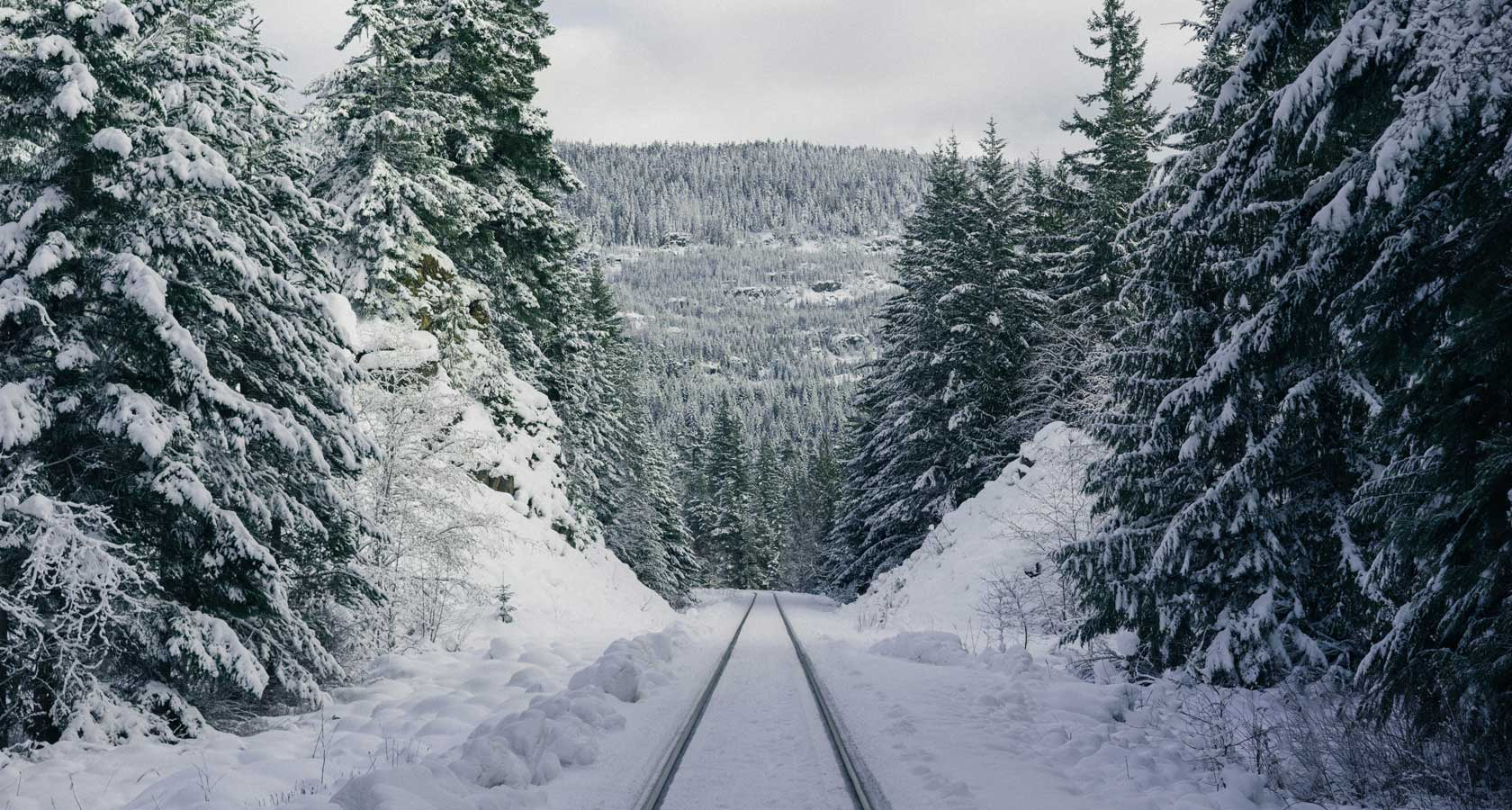 железная дорога в тайге